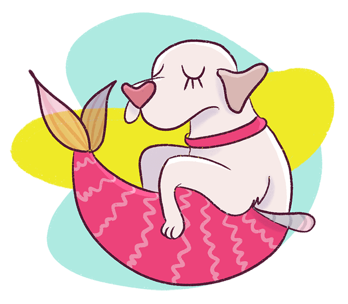 This 7 day email course will teach you to start a blog that is profitable from scratch. You will understand the fundamentals of blogging like choosing a profitable niche, identifying your target audience, learning how to write viral blog posts and more! Dog as a Mermaid Illustration.