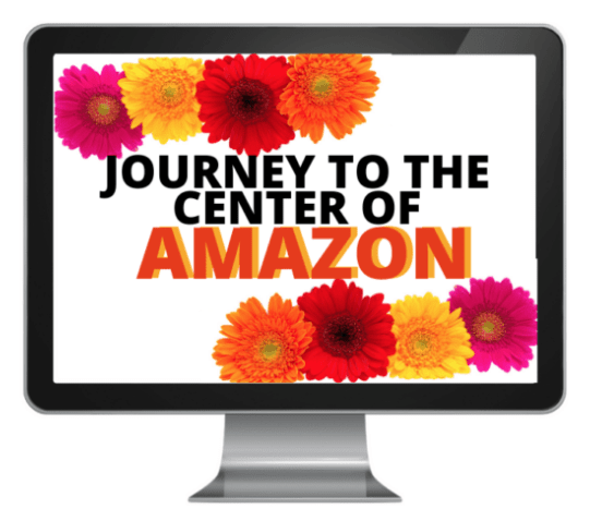 Journey to the center of amazon is one of the best eCourses about amazon affiliate marketing out there. This eCourse will teach you how to become an expert in Amazon affiliate marketing.